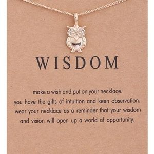 Inspirational Wisdom Owl Pendant Necklace NEW
